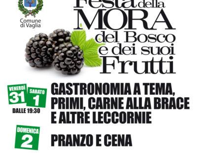 Festa della Mora, del Bosco e dei suoi Frutti